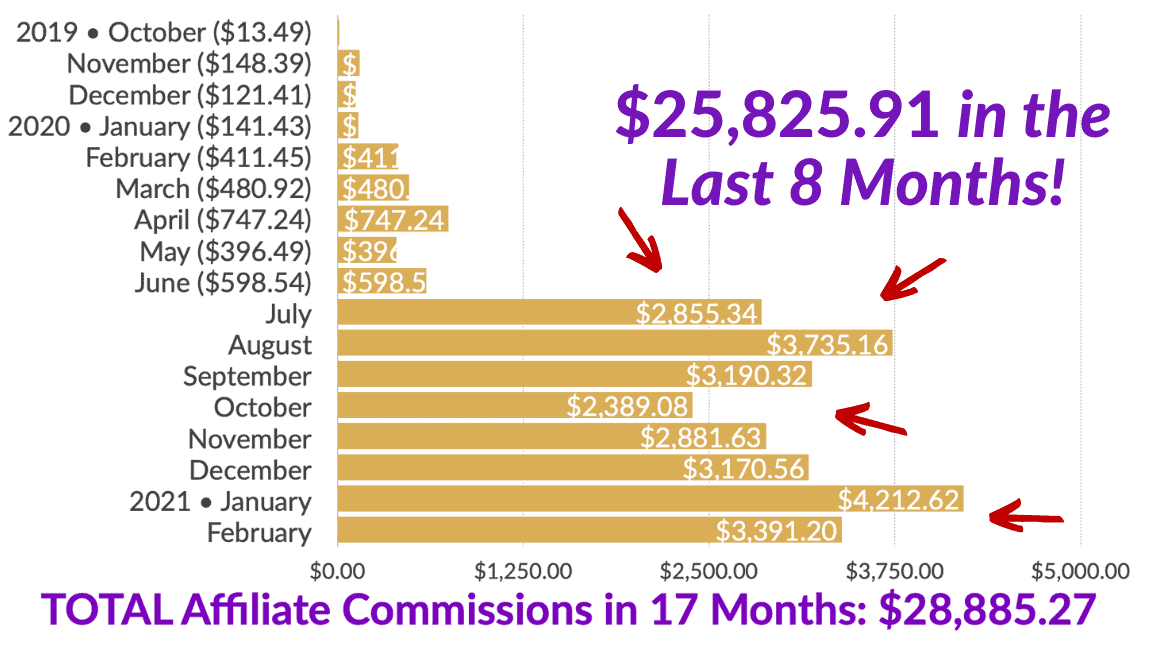 Total Affiliate Commissions in 17 Months!